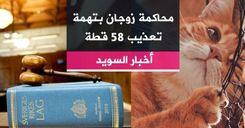 محاكمة زوجان بتهمة تعذيب 58 قطة image