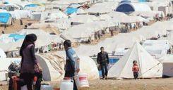 السويد تستأنف استقبال حصتها من اللاجئين image