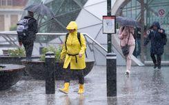 هيئة الأرصاد الجوية تصدر تحذيرات من عواصف مطرية  image